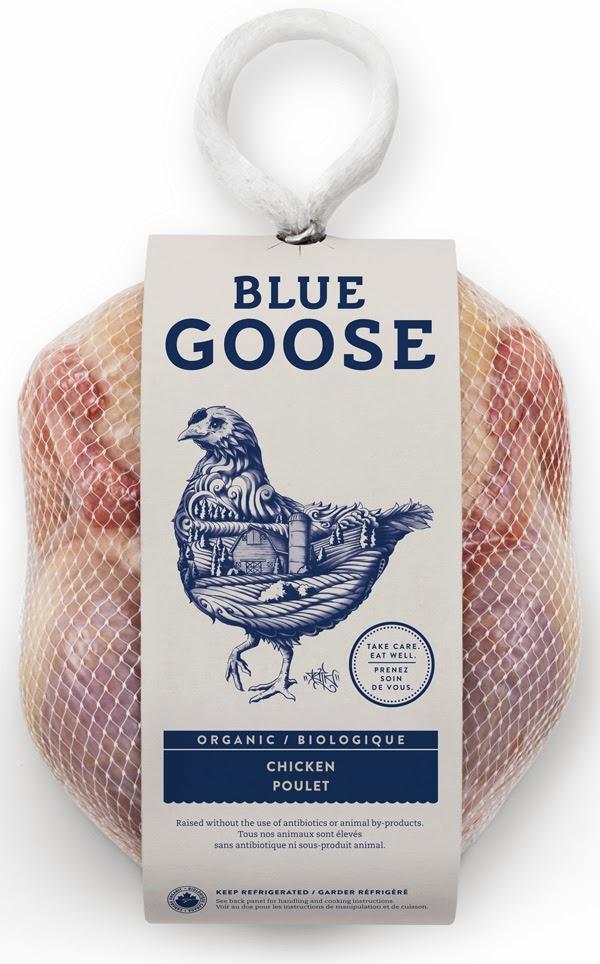 Blue_Goose_2