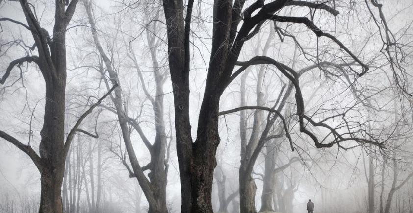 W lesie z Kilianem Schönbergerem