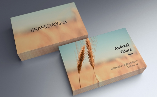 Mock-up – Wizytówka / Business Card – 55 x 85 mm