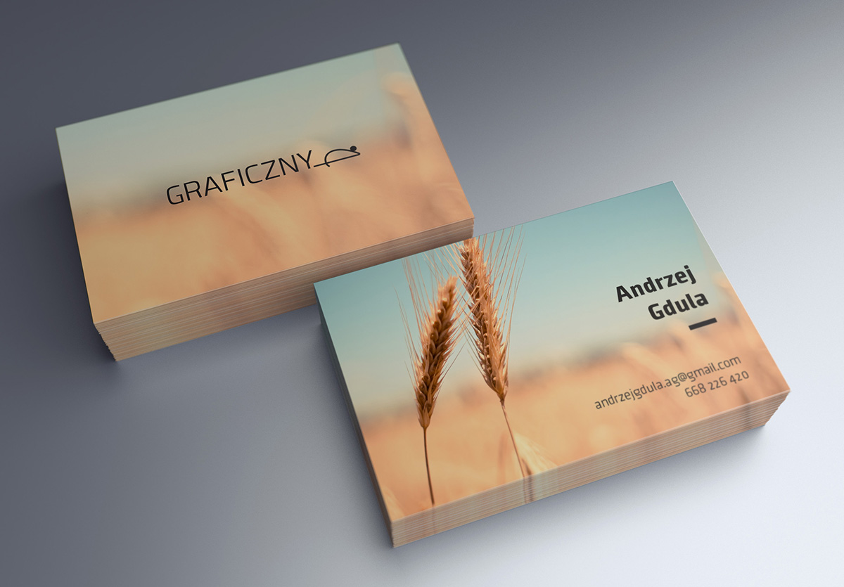 Mock-up_Business_Card_85x55mm_2