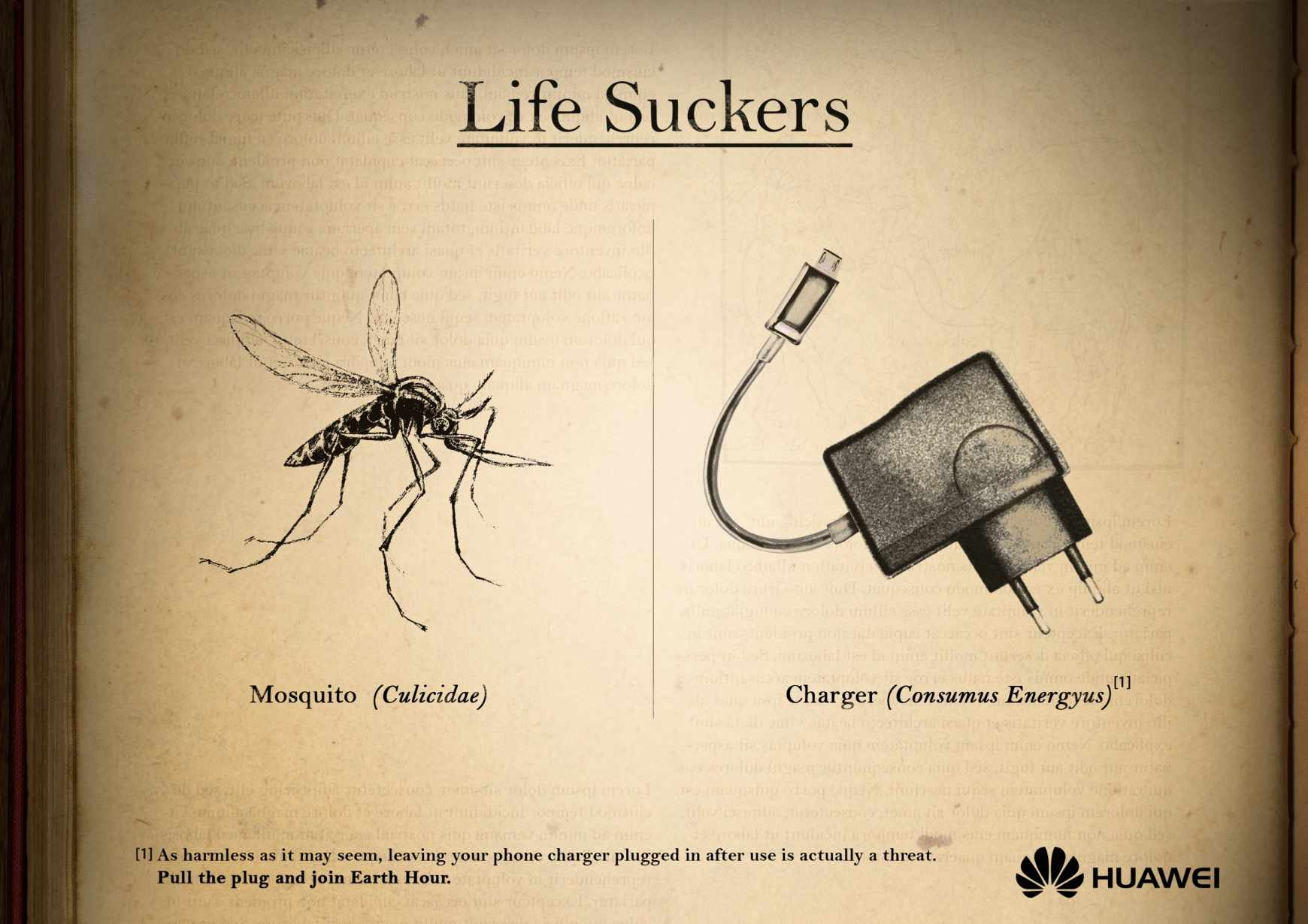 huawei_earth_hour_mosquito_aotw
