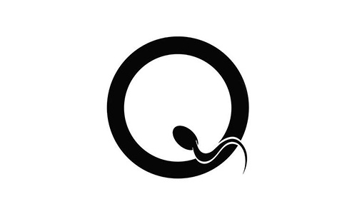 Queens_of_the_Stone_Age_logo