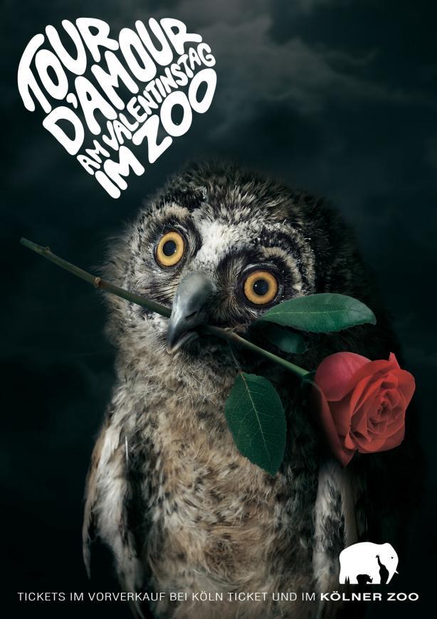 a4_poster_print_owl