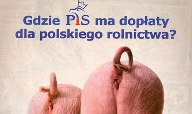 plakaty_wyborcze_17