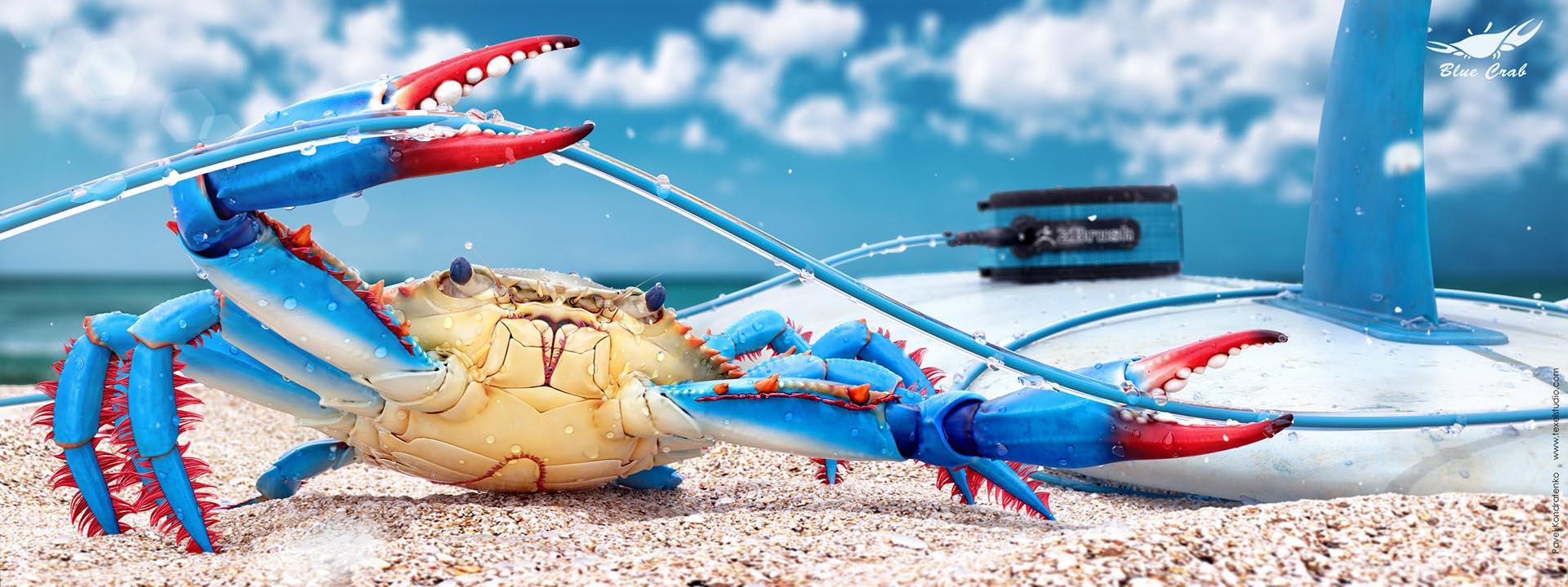 2013-10-15(146553)_crab_01_resolition_1920