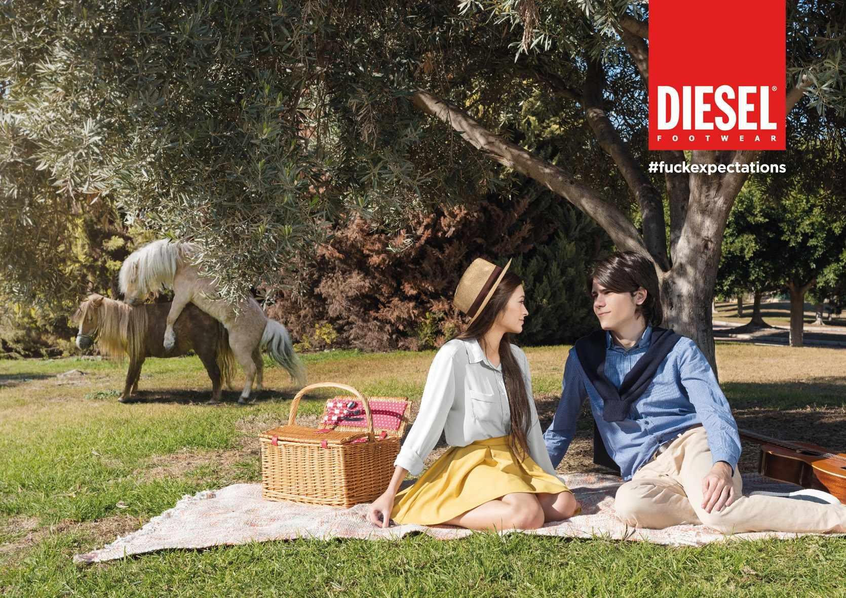 baja_dieselss15_picnic_h_aotw